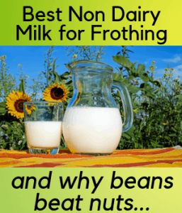 Best Non Dairy Milk for Frothing
